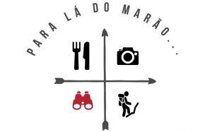 logo-pldm_programas