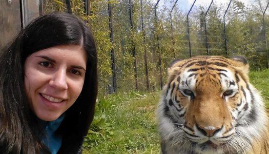 UTAD investiga condições de animais exóticos e selvagens