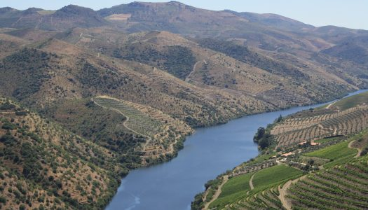 Região de Trás-os-Montes e Douro viaja até à América do Sul