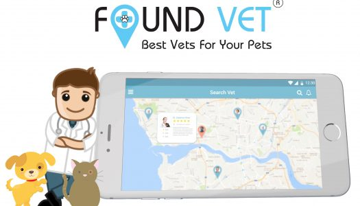 Nova plataforma permite assistência de animais de estimação ao domicílio