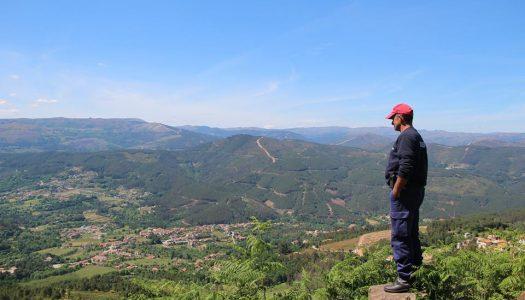Estudantes de Pedrógão Grande podem candidatar-se a bolsas para estudar Engenharia Florestal na UTAD