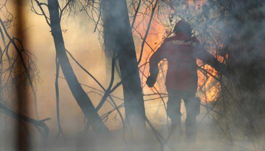 """Incêndio em Alijó: """"Francamente melhor"""" mas ainda não está dominado"""