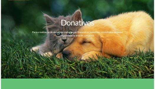 Plataforma online facilita adoção de animais