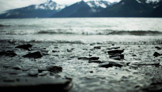 Investigadora da UTAD alerta para a escassez de água