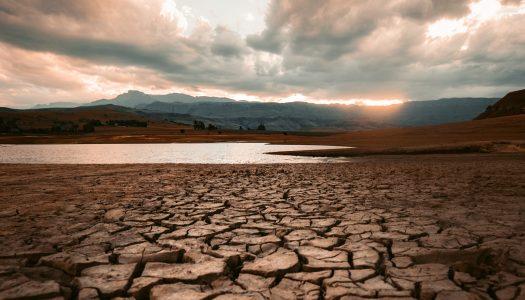Escassez de chuva pode deixar Portugal em condições comparáveis com o Norte de África