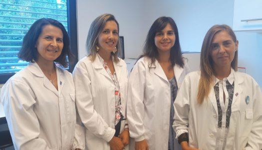 Investigadores portugueses identificaram a função de um RNA não-codificante no Homem