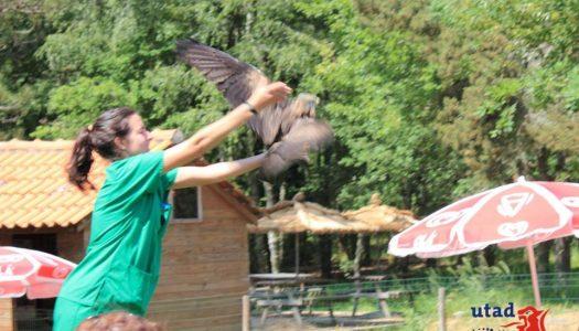 Devolução à natureza de ave selvagem marcou o final da edição deste ano do Plano Soft-Skill's da UTAD